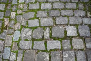 Maastricht (93)