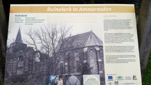 Ruinekerk in Ammerzoden (19)