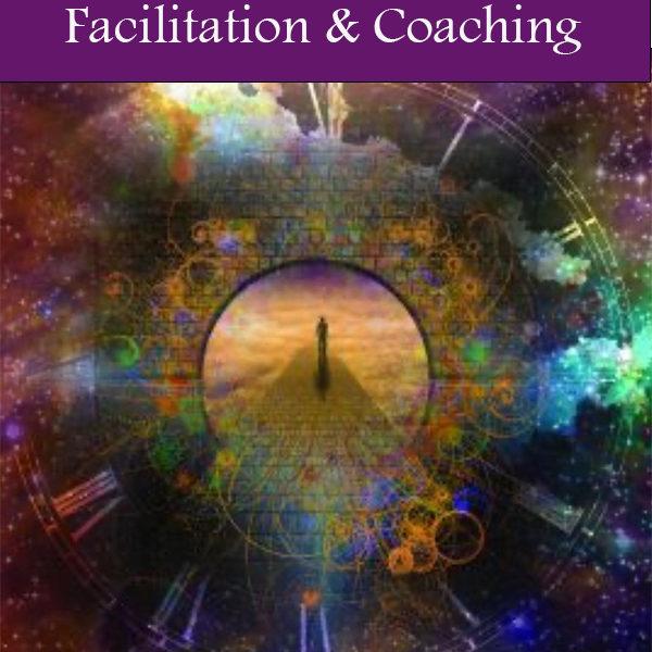 Facilitation Services